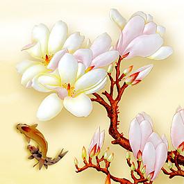 錦鯉與玉蘭花圖片