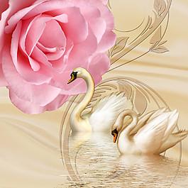 天鵝鮮花無框畫圖片