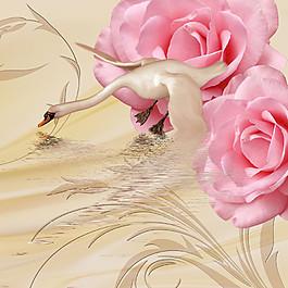 天鵝與玫瑰花圖片