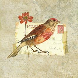 小鳥花朵水彩畫圖片