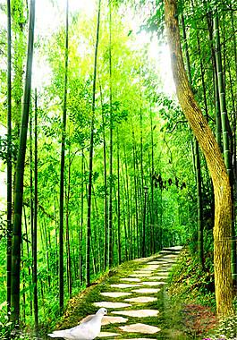 竹林小路風景圖片