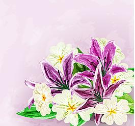 唯美百合花