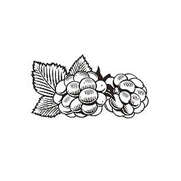 卡通山莓漫畫圖片