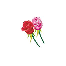 玫瑰花朵浪漫