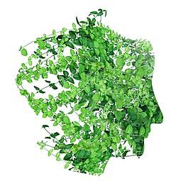 植物 人頭