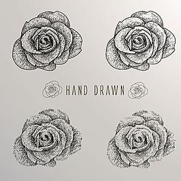 手绘素描风格玫瑰系列