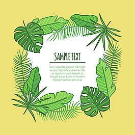 棕櫚樹葉裝飾邊框背景