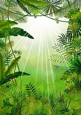 森林背景素材