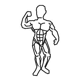 男性健美圖標圖片
