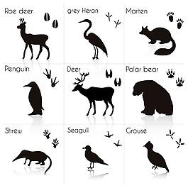 小鹿等動物剪影圖片