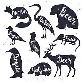 英文字母動物剪影圖片