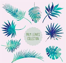 8款水彩繪棕櫚樹葉矢量素材