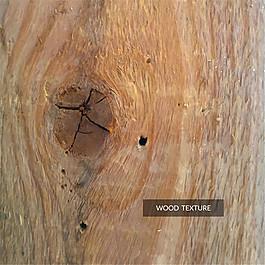 逼真帶結疤的木材背景矢量素材