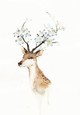 手繪插畫唯美小鹿