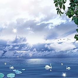荷花天鵝樹葉大雁高光白云素材
