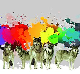 潑墨彩色色塊狼群素材