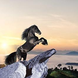 石頭黑馬云山夕陽素材