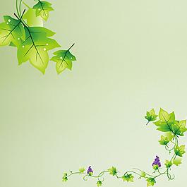 樹葉樹藤葡萄綠色背景素材