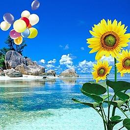向日葵樹葉藍天白云氣球石頭素材