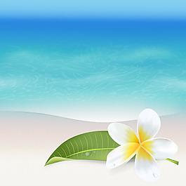 海邊的雞蛋花