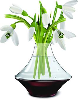花瓶里的花朵