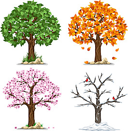 春夏秋冬的大樹