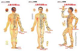 人體穴位圖展板