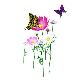 清新蝴蝶花朵元素