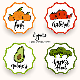 復古風格健康蔬菜水果食品貼紙圖標
