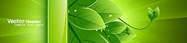 绿色环保绿叶