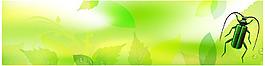 绿化环保生态背景