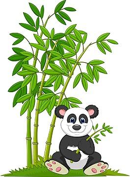 熊貓和竹子插畫