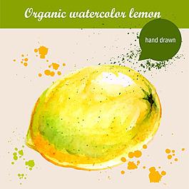 水彩绘芒果
