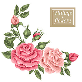復古玫瑰紋理圖案和邀請卡設計矢量素材