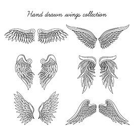 寫實風格手繪翅膀雙翼矢量素材