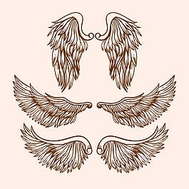 手繪寫實風格翅膀雙翼插圖矢量素材