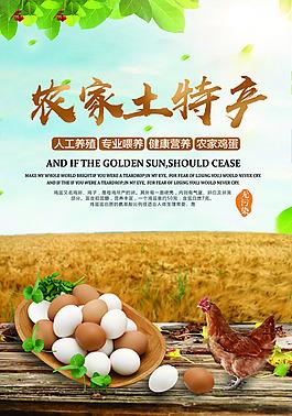 土特產雞蛋海報