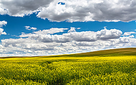 藍天白云廣告背景