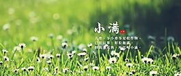 24節氣-小滿海報