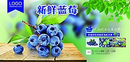新鮮藍莓海報