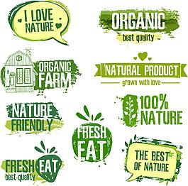 綠色線條水彩邊框對話框logo矢素材