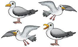 四只不同姿態的小鳥插圖