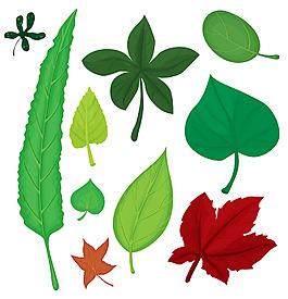各种形状叶子插图矢量素材