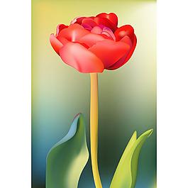 寫實風格紅色花朵模糊背景