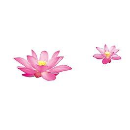 唯美粉色荷花元素