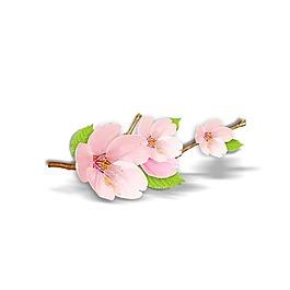 清新粉色桃花元素