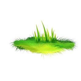 矢量清新綠色水草元素