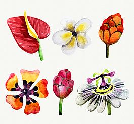水彩繪花朵矢量