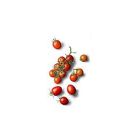 紅色櫻桃水果元素