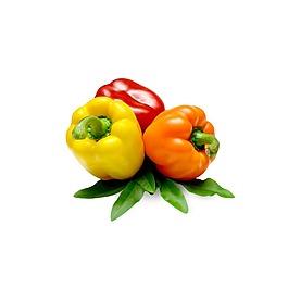 彩色辣椒元素